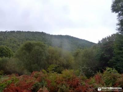 Castañar de El Tiemblo; selva irati rutas charco del cura rutas por sierra de madrid rutas senderis